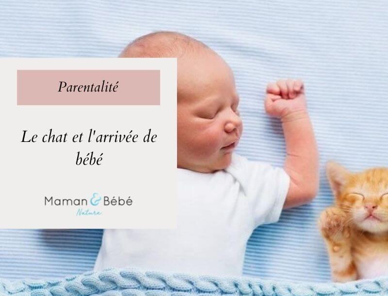 Le chat et l'arrivée de bébé